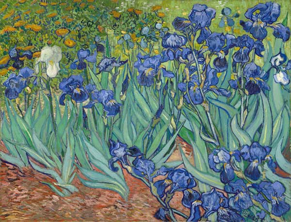 https://forum.revestou.fr/uploads/images/2020/05/05/iris-vincent-van-gogh.jpg